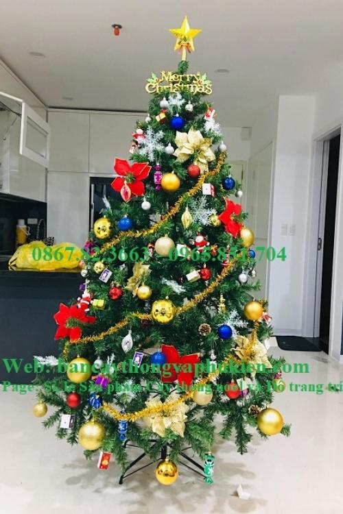 Cây thông xanh 2.1m hàng Việt Nam